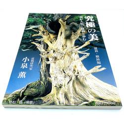 EXTREME BEAUTY - KARO KOIZUMI
