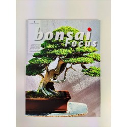 Bonsai Focus nº 5