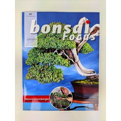 Bonsai Focus nº 41
