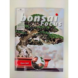 Bonsai Focus nº 43