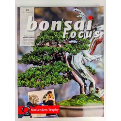 Bonsai Focus nº 23